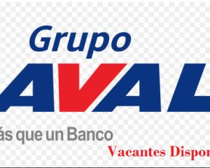 Grupo Ava